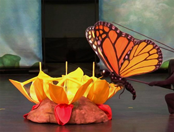 Butterfly: The Story of a Life Cycle